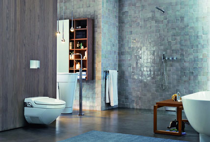 wasser statt papier was im dusch wc segment beachtet werden sollte ikz de. Black Bedroom Furniture Sets. Home Design Ideas