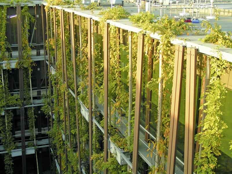 Klimaaktives Bauen mit grünen Dächern und Fassaden ...